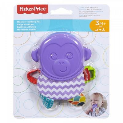 Mustang klacz